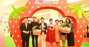 งาน 'I Love K-Strawberry' ลิ้มรสสตรอเบอร์รี่เกาหลีหวานฉ่ำ