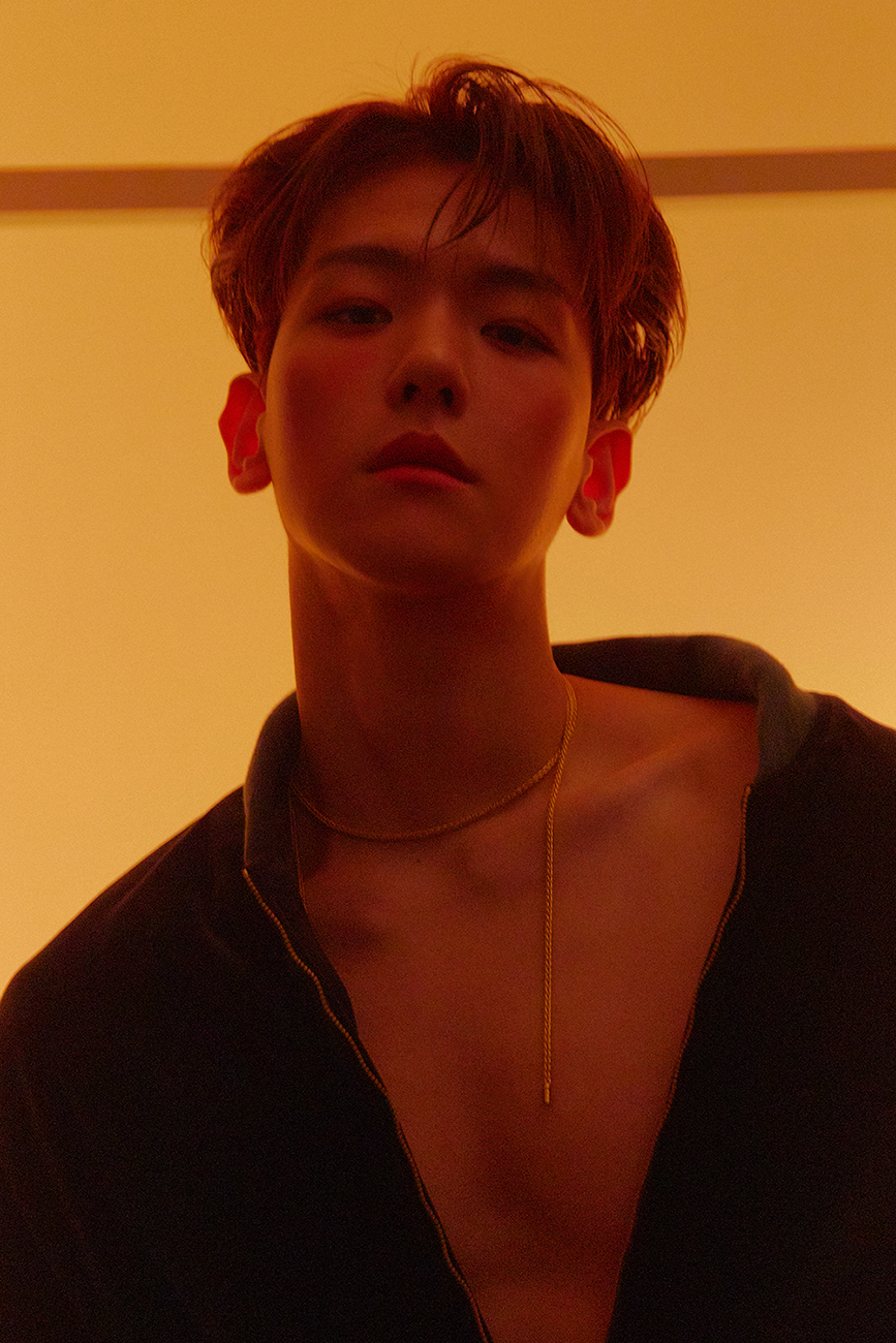 [Teaser Image 4] BAEKHYUN - The 2nd Mini Album 'Delight'